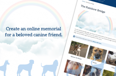 Rainbow Bridge Online Dog Memorials
