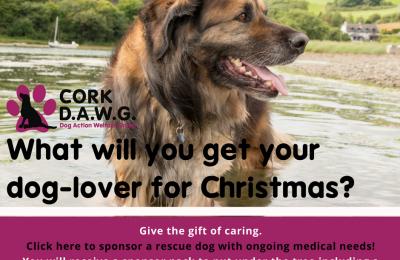 sponsor-dog-xmas-campaign-3-spelling-1